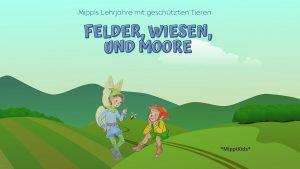 Felder, Wiesen, Moore